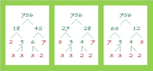 756 factor trees